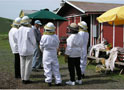 Beekeeping Workshops