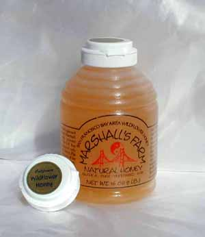 Honey 16 oz. Plastic Squeeze Skep Bottle - California Wildflower