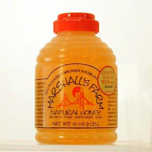 Honey 16 oz Plastic Squeeze Skep Bottle - Contra Costa Wildflower