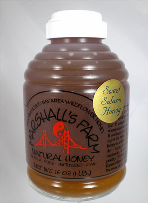 Honey 16 oz. Plastic Squeeze Skep Bottle - Sweet Solano Wildflower