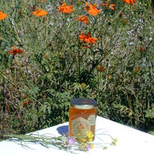 Honey 8 oz. Glass Gift Jar - California Wildflower