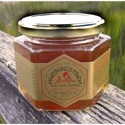 1 lb. Glass Jar S.F. Bay Area Blend  Wildflower Honey