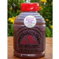 Honey 1 lb Glass Jar - West Coast Wildflower