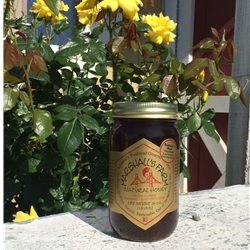 Honey 1.5 lb. Pint Glass Jar - Beekeeper's Blend Wildflower