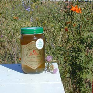 Honey 24 oz. Pint Glass Jar - Big Valley Wildflower