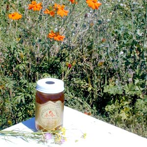 Honey 24 oz. Pint Glass Jar - California Wildflower